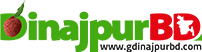 dinajpurBD logo